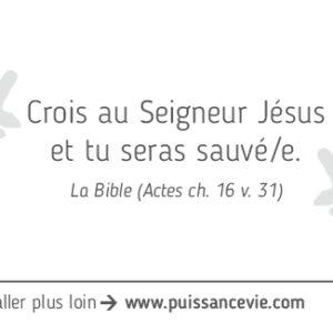 03-Sauve-Fr_300x300_verso